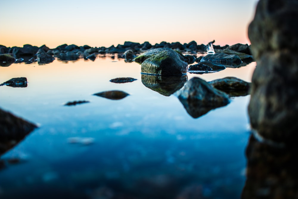 macro photography of rock formations surrounded by body of water