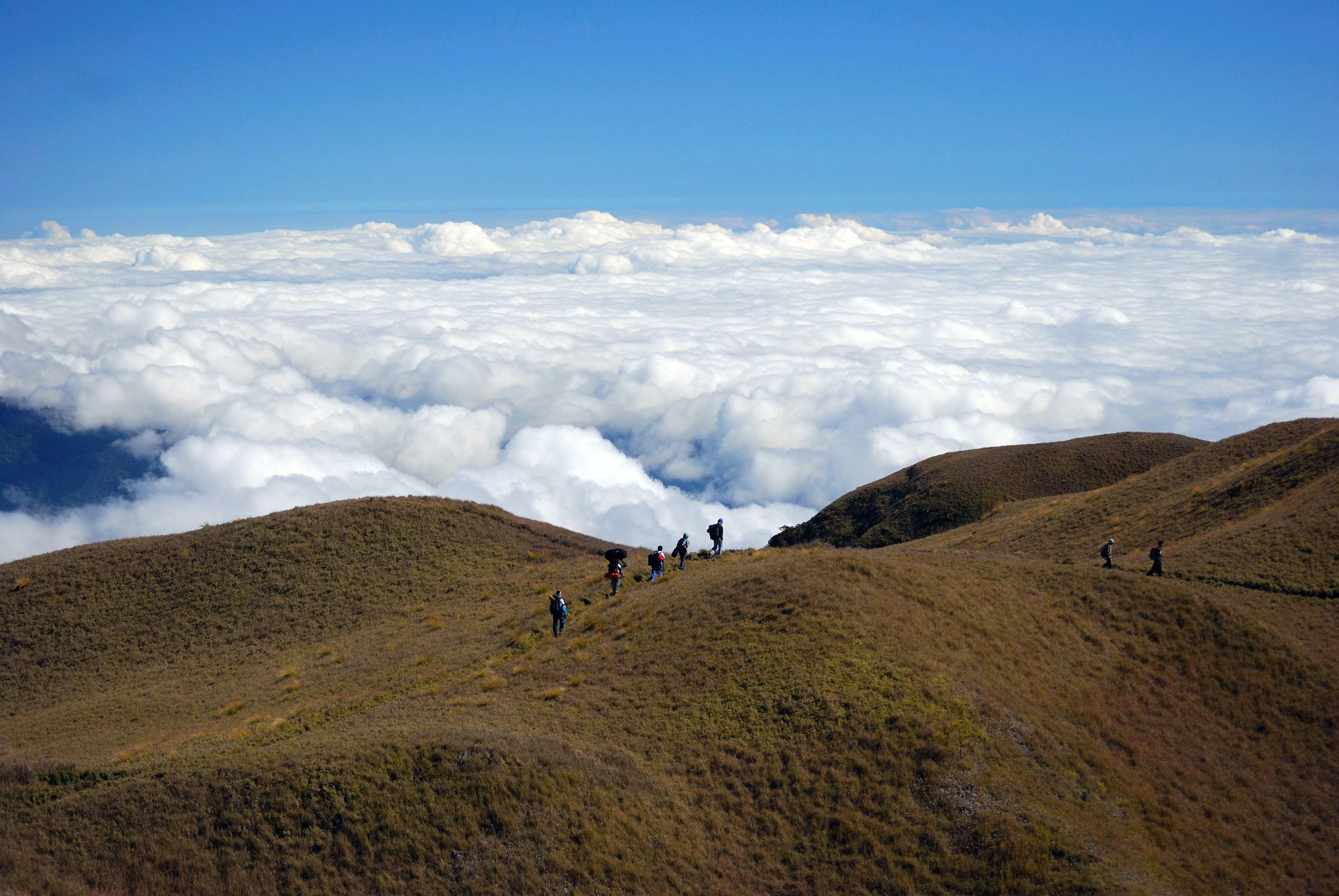 people climbing on mountain during daytime
