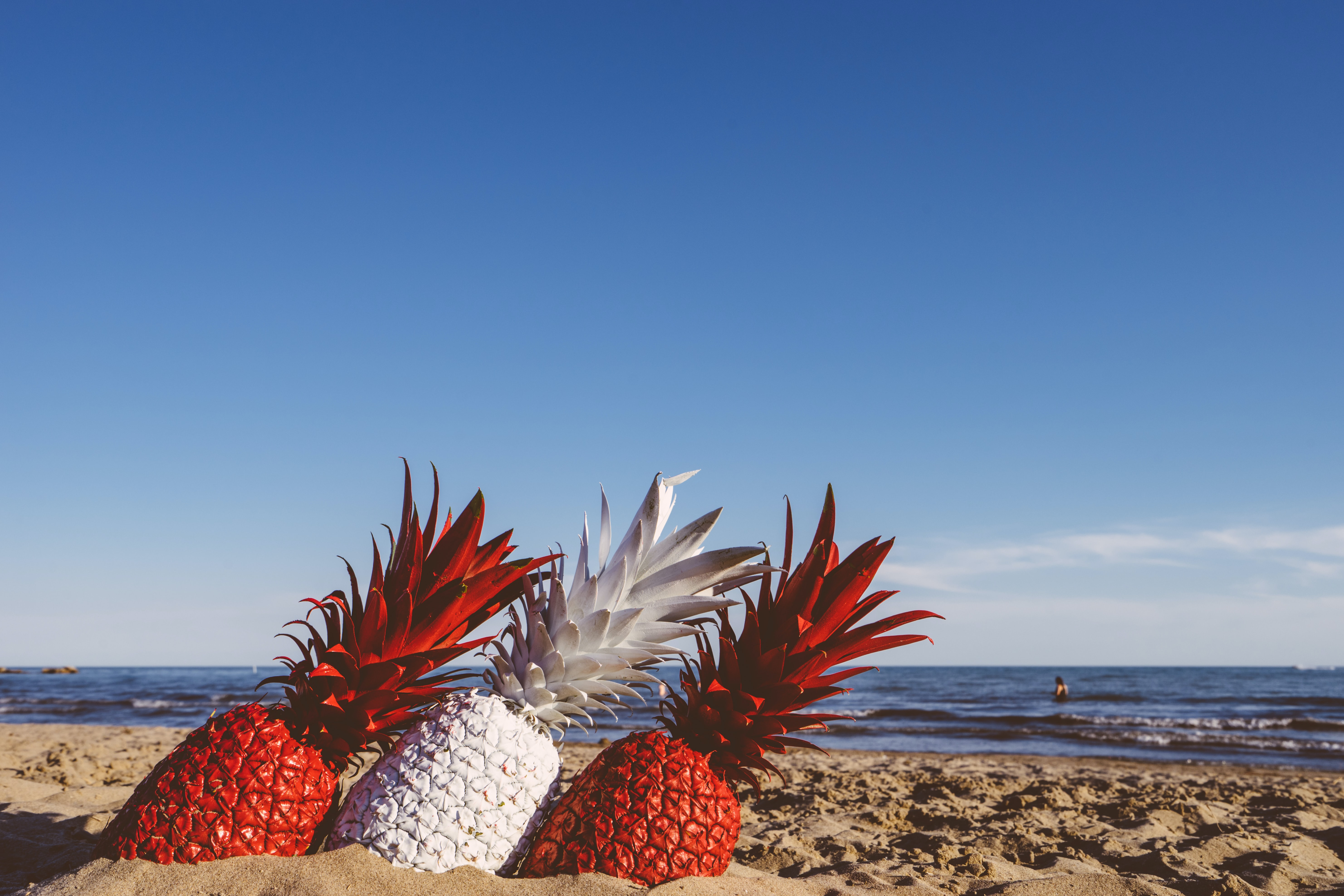 two red and white pineapples on seashore during daytime