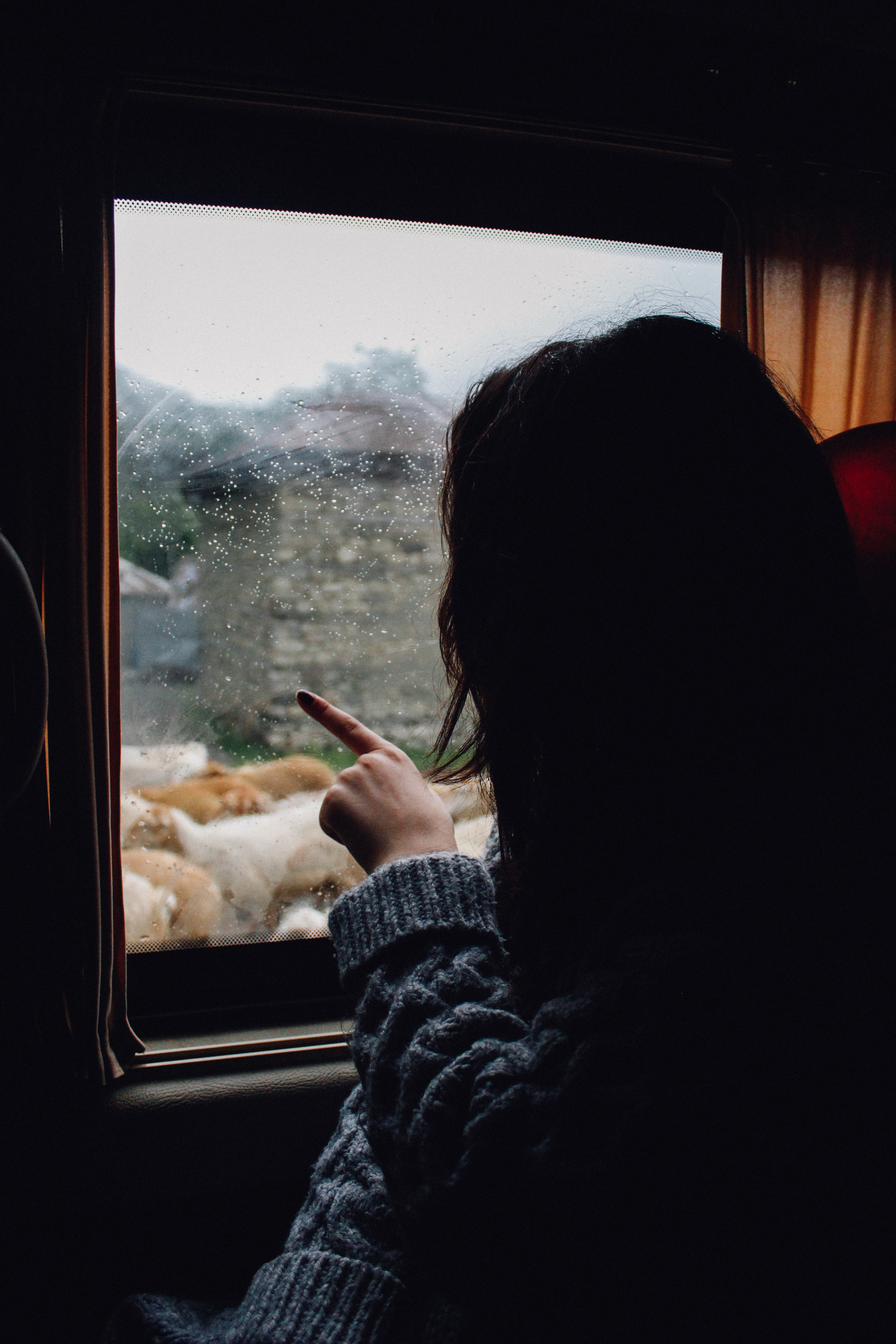 A woman in a train pointing at the window