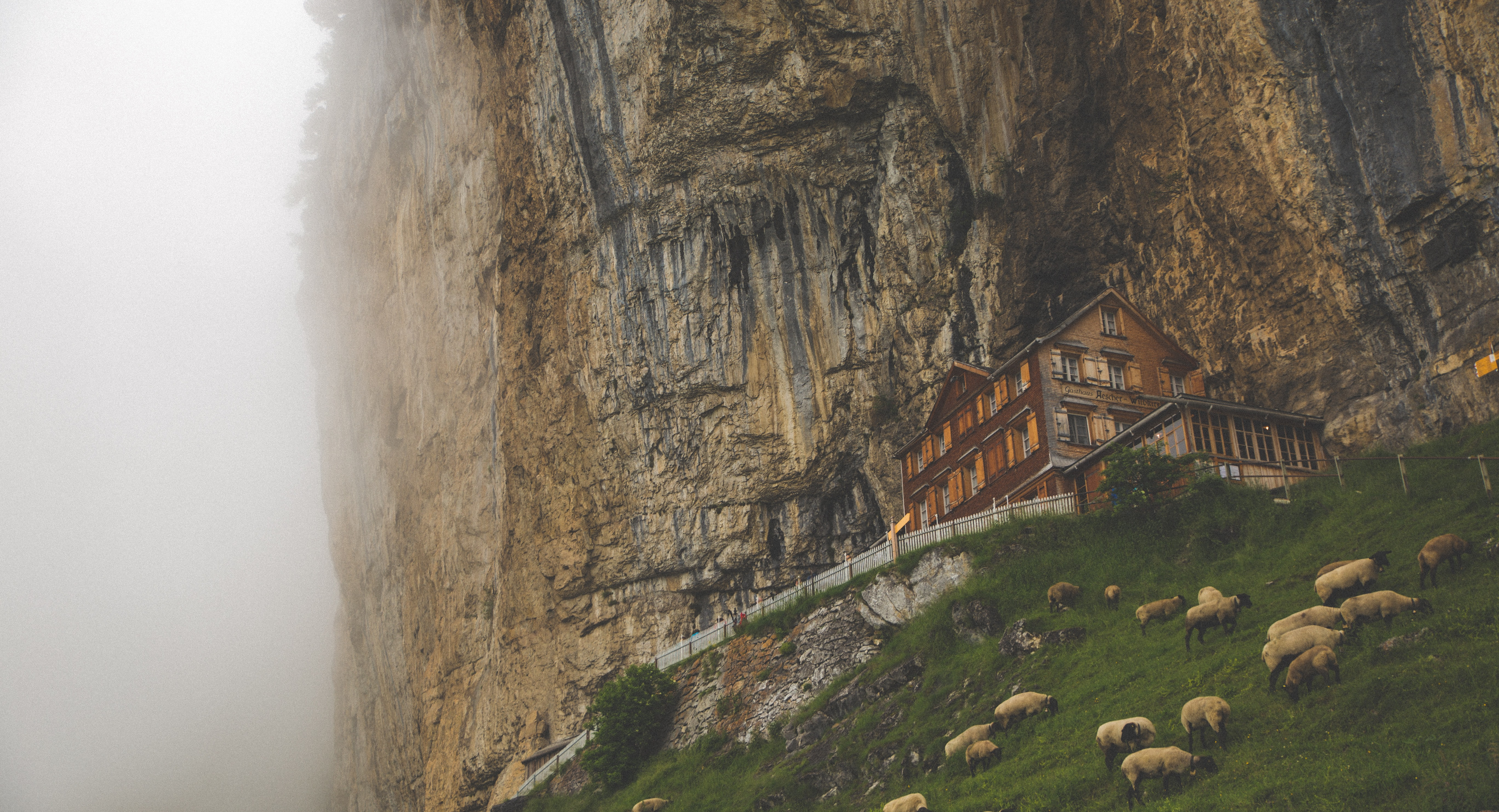 house near cliff and herd of sheep