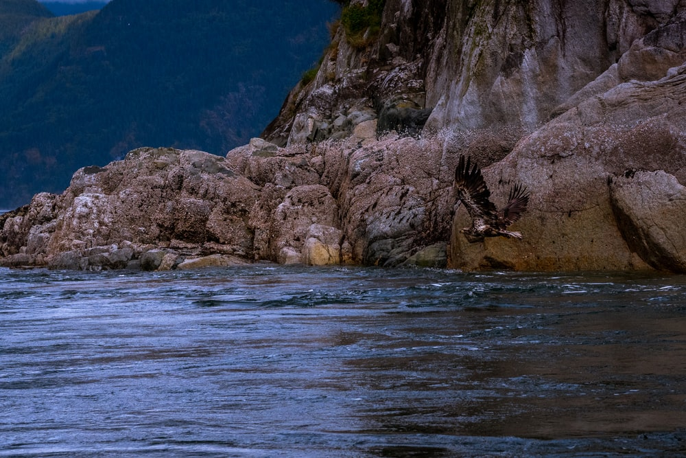 body of water beside rock formation during daytime