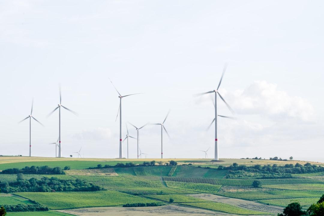 """""""wine turbines"""""""