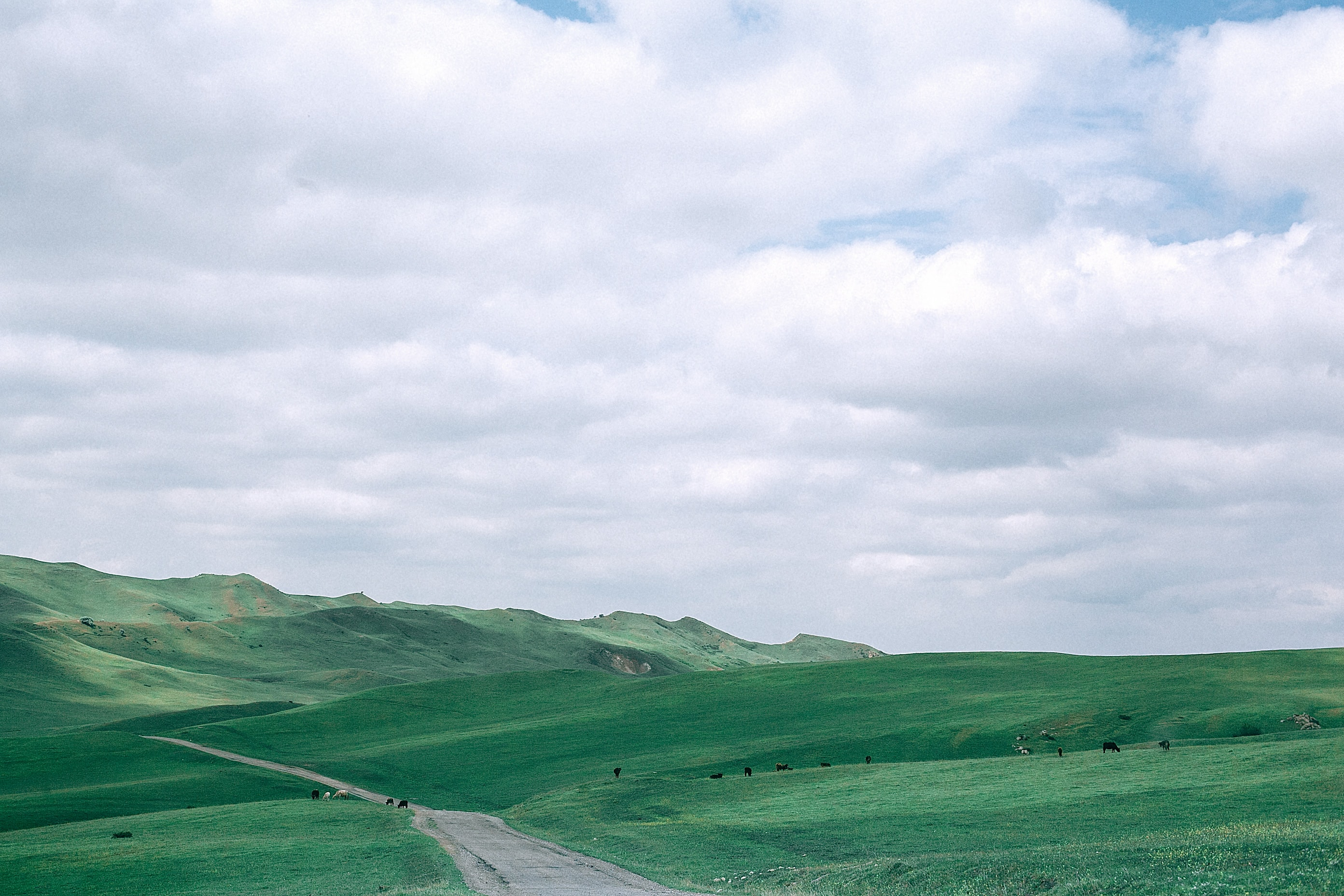 photo of green hill under cloudy white sky