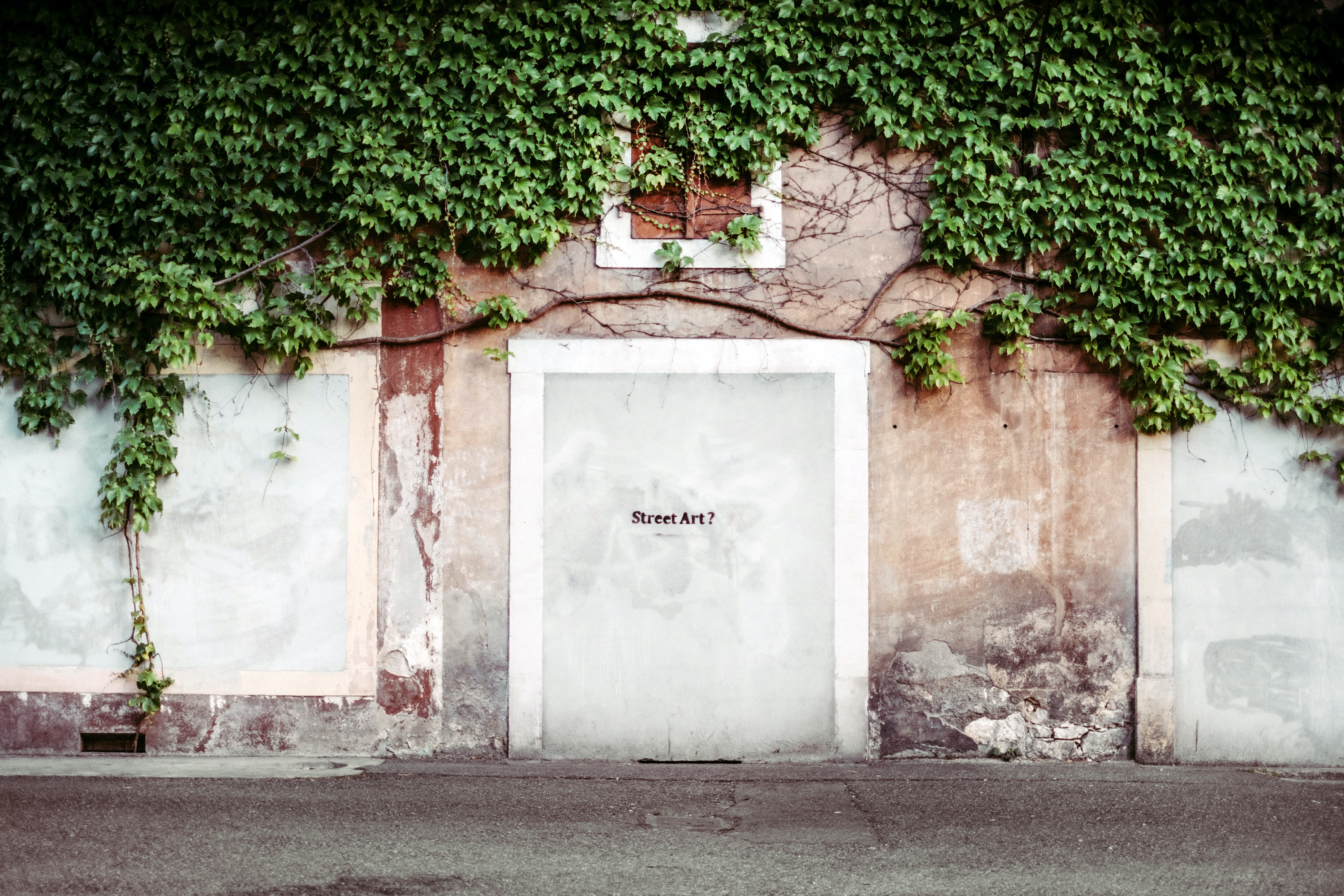 Ivy covered urban wall with street art text graffiti tag on white doorway in Geneva