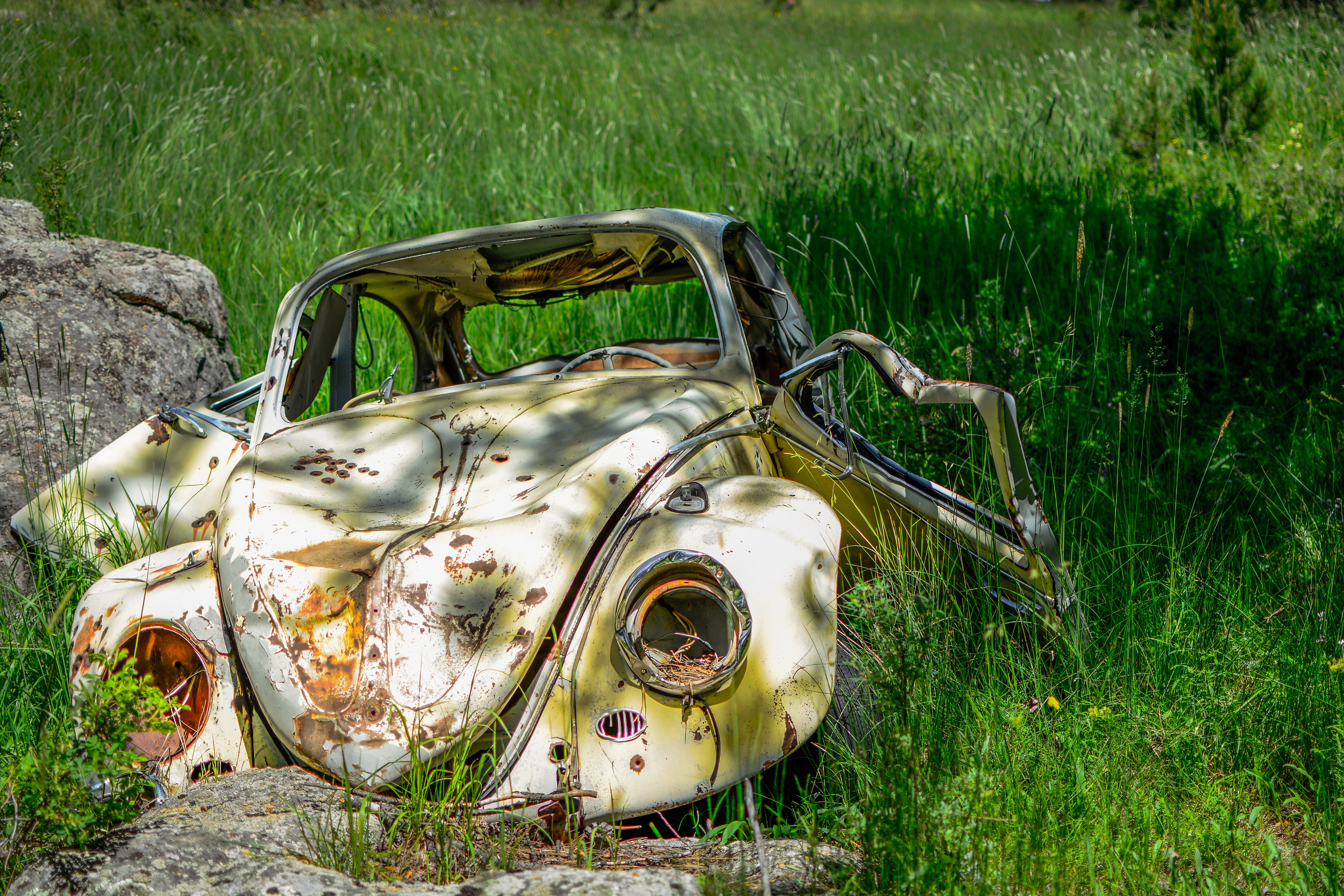 Rusted Volkswagon bug abandoned in the field.