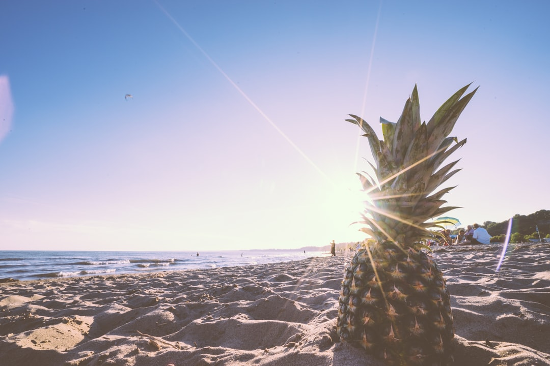 free pineapple photo from the beach