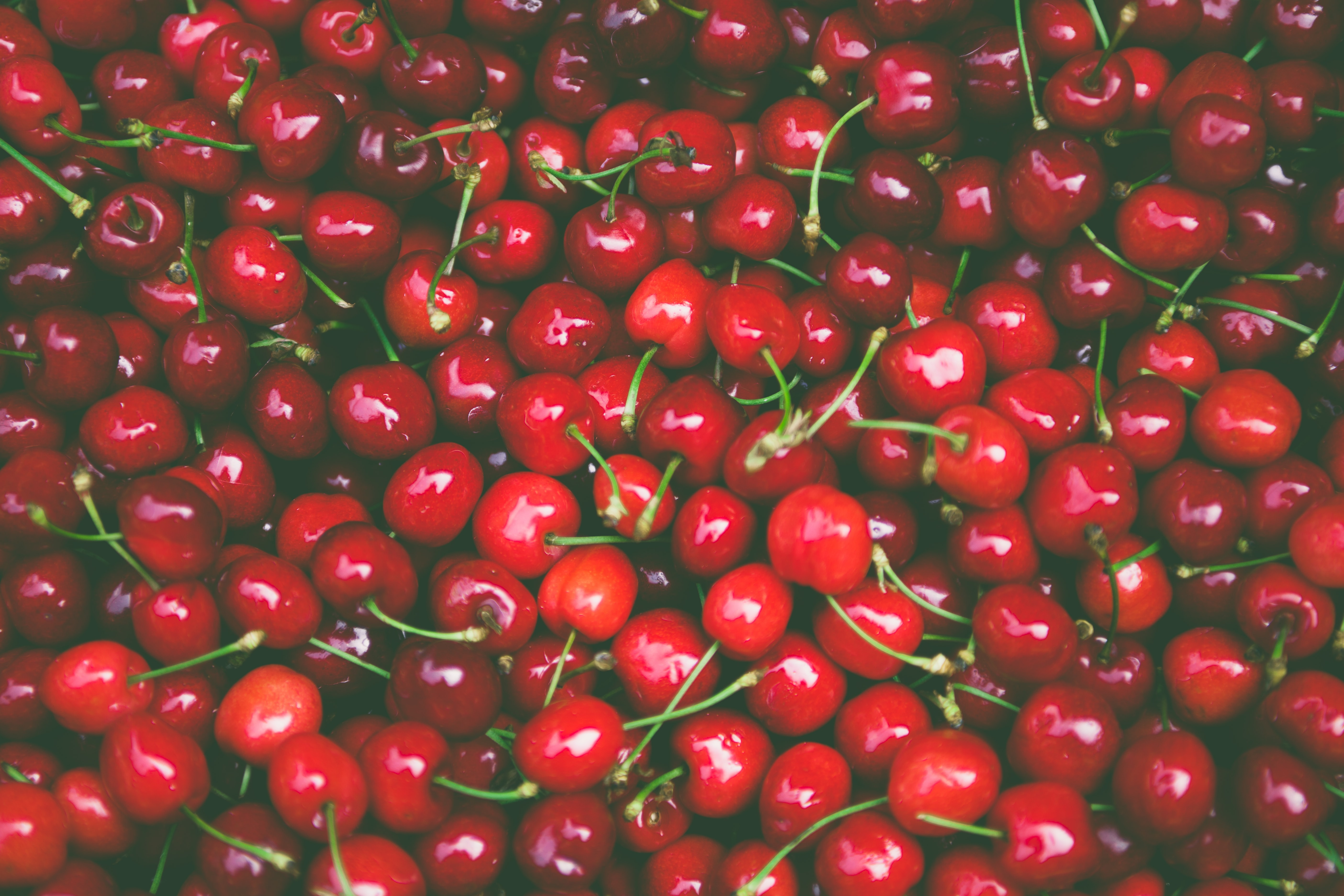 Pile of fresh red cherries on the stem