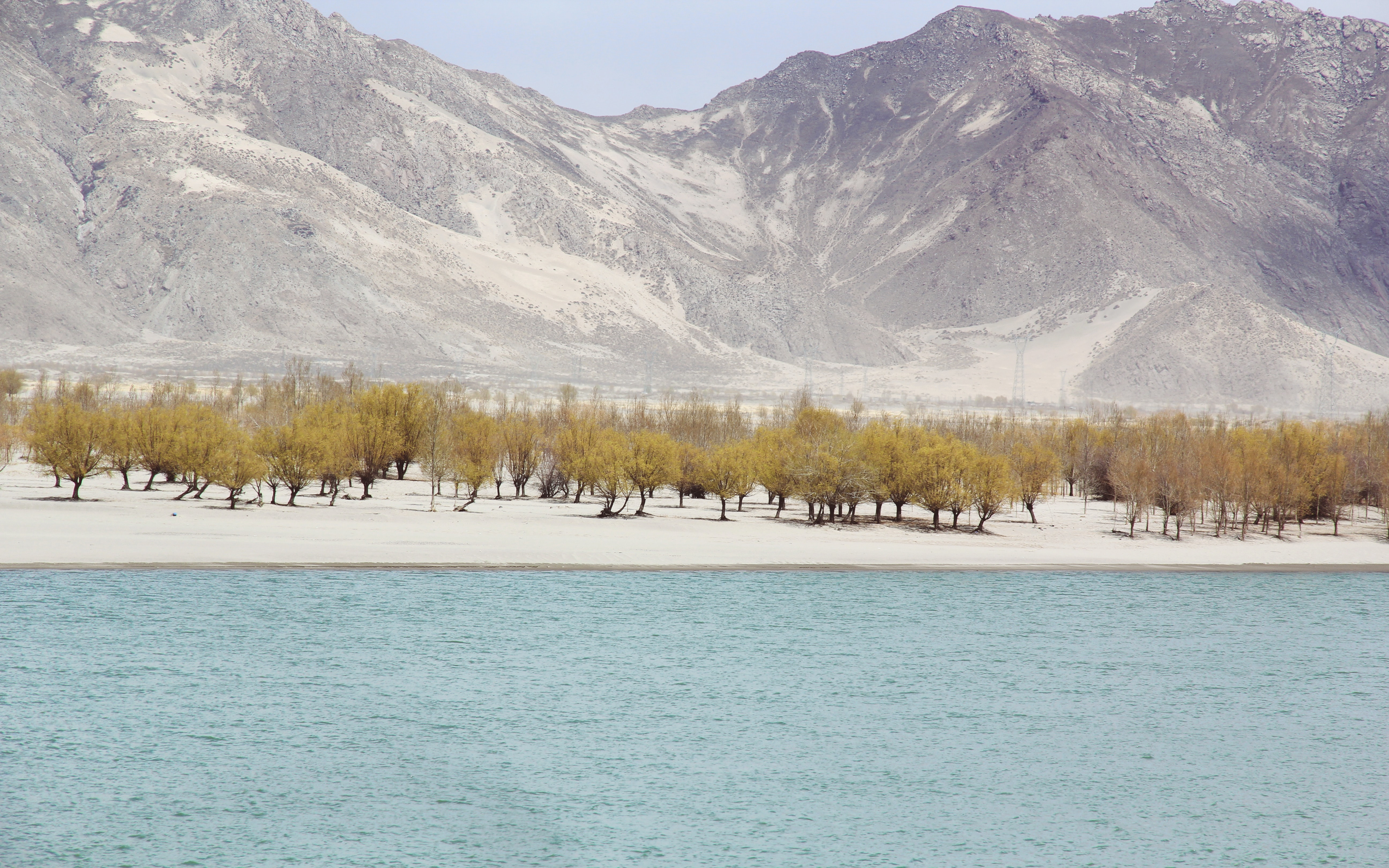 A refreshing lake in the middle of a desolate desert in Tibet