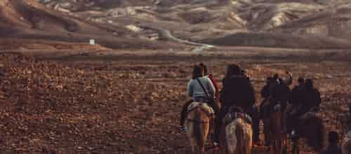 תפקודים ניהוליים (EF) - מה הקשר להפרעת קשב ולרכיבה על סוסים