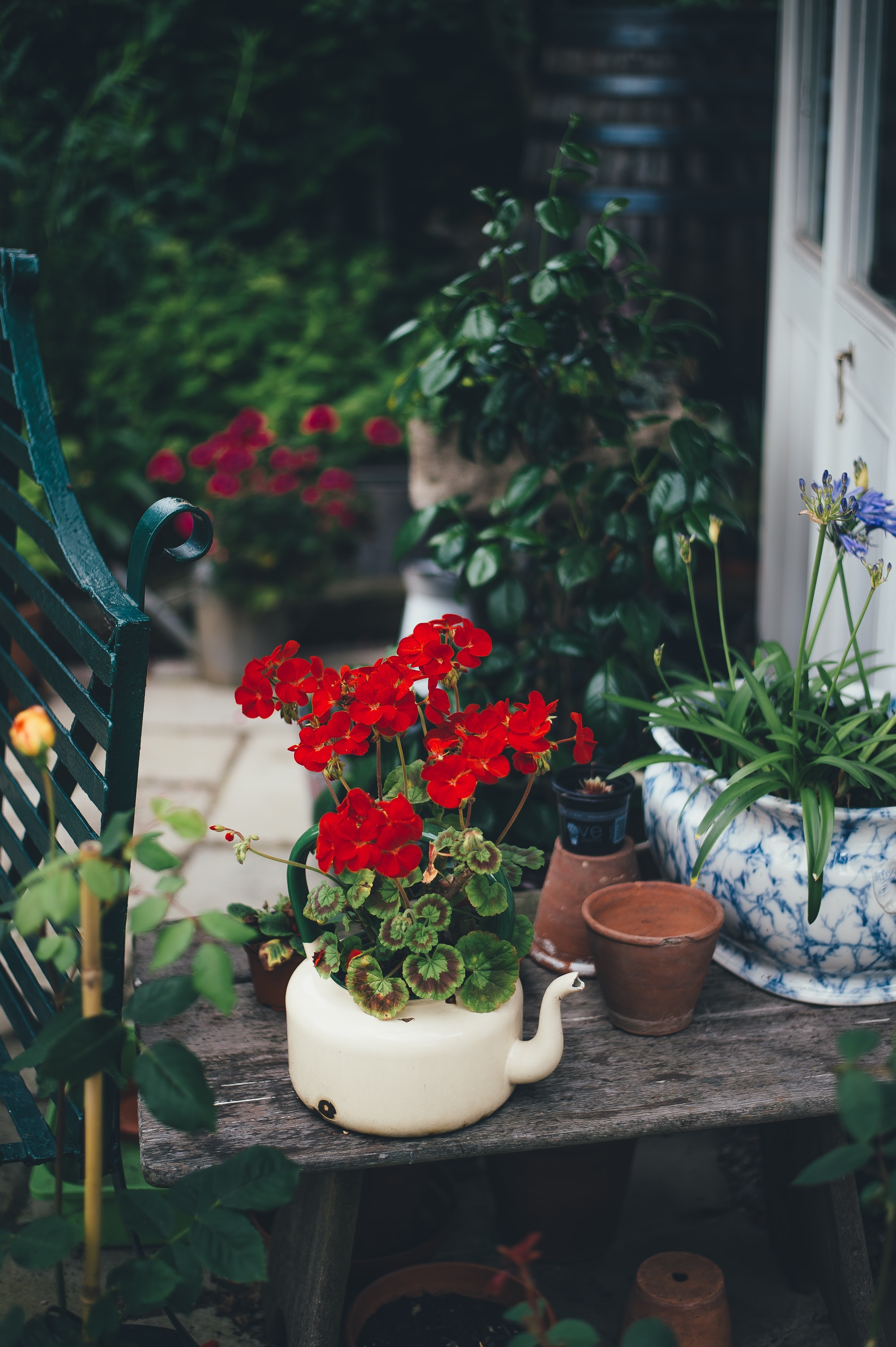 Flowers and plants in vintage pots on a front porch