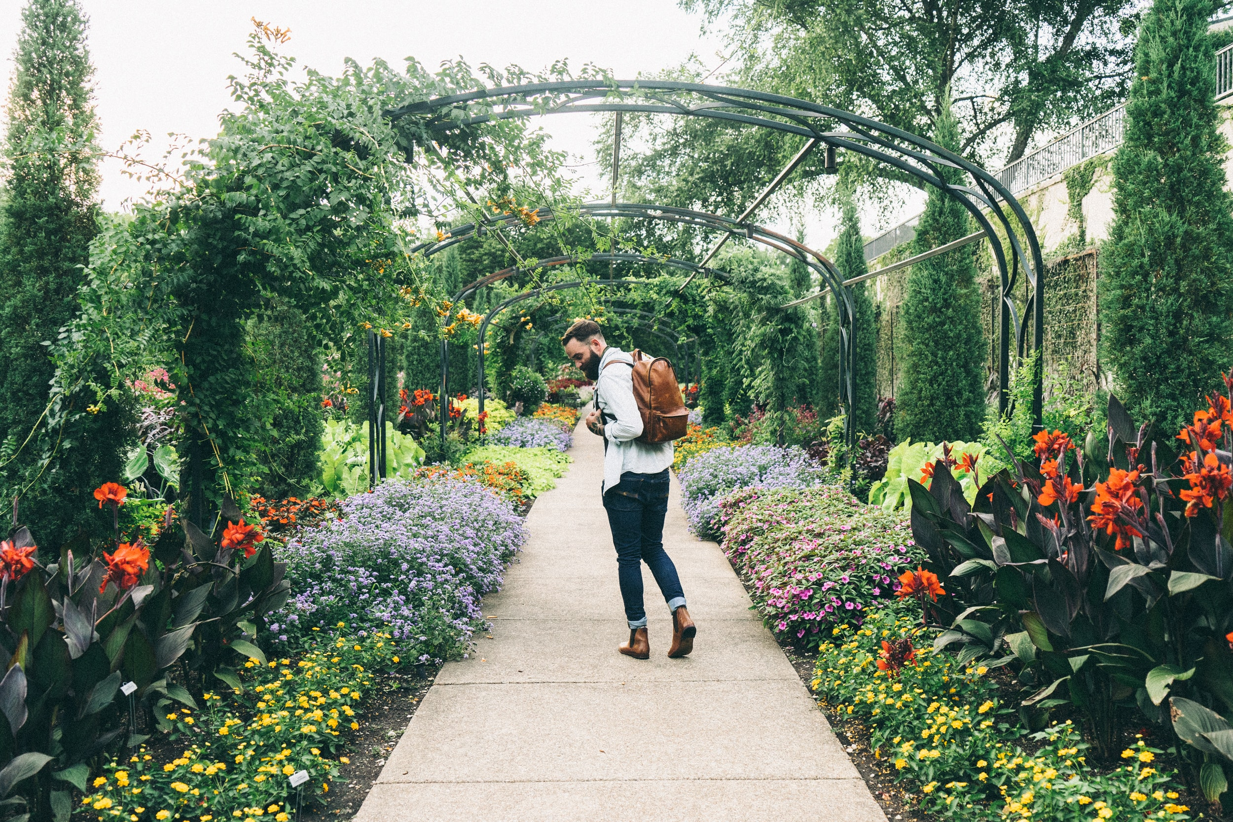 Bearded man walking through Cheekwood-Art & Gardens admiring the colorful flowers and the lush greenery