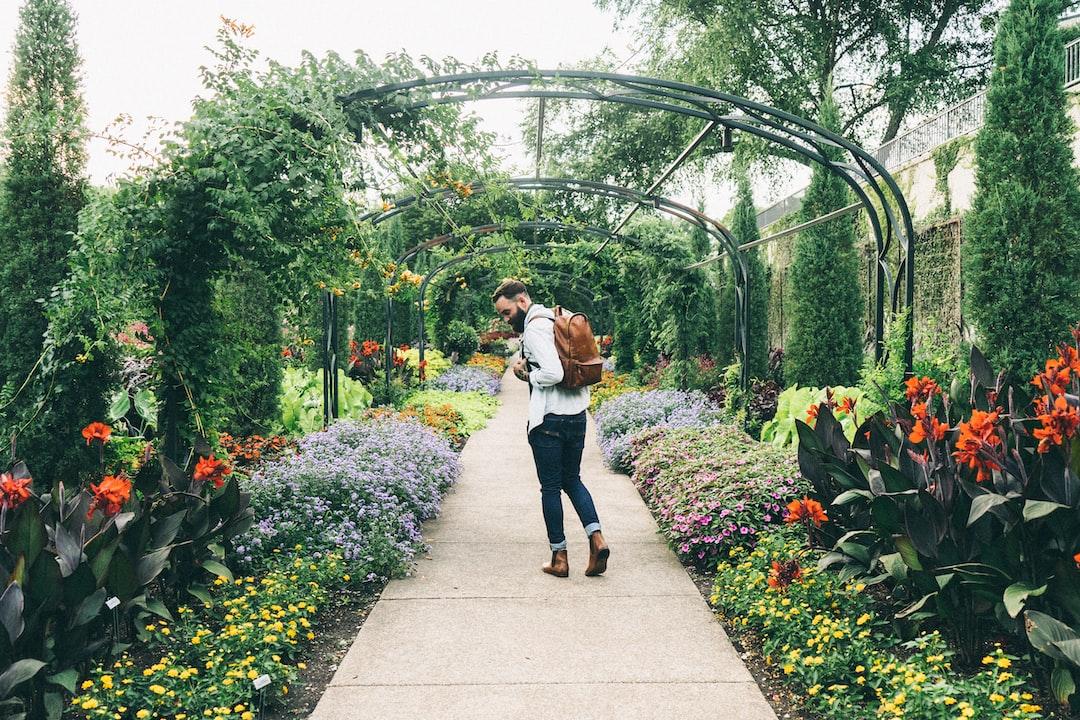 Man walking through a garden