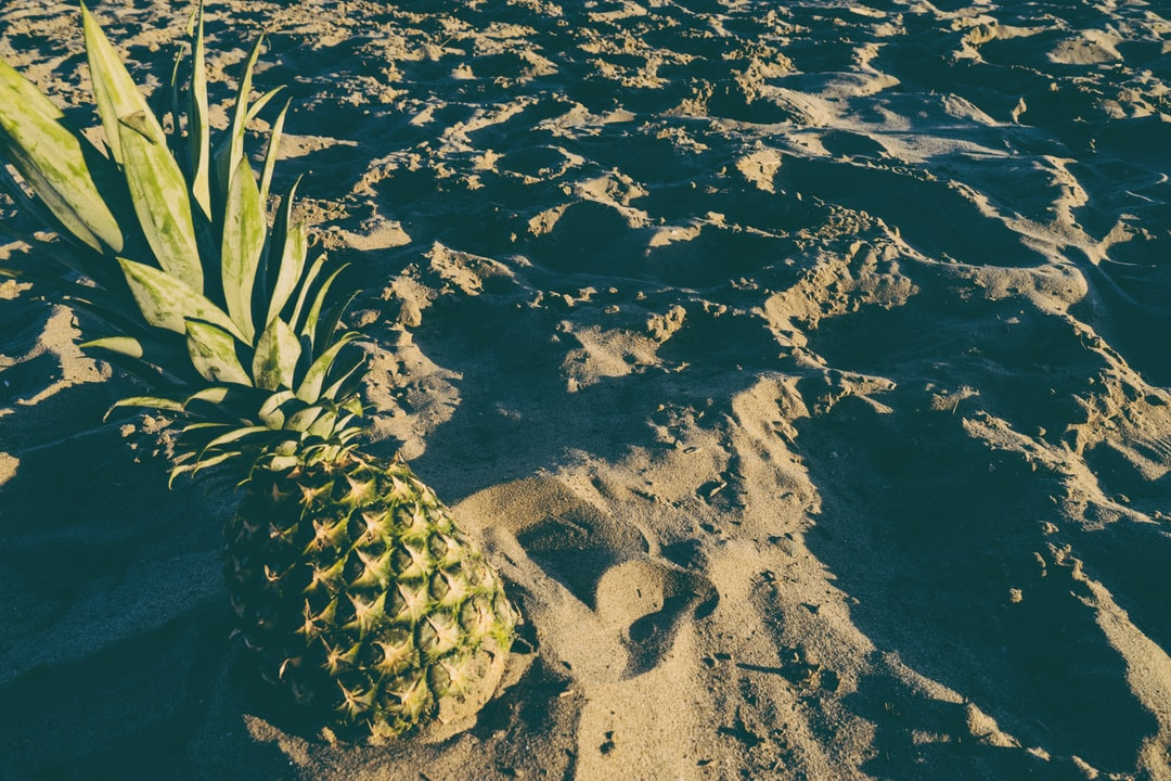 pineapple in the sand