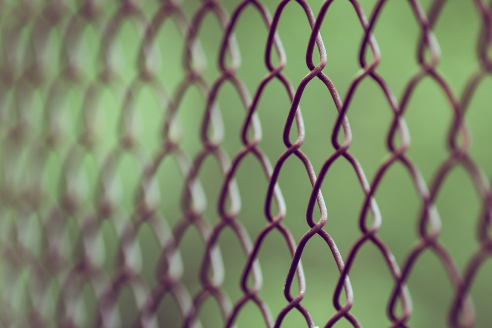brown chain-link fence in closeup photography at daytime