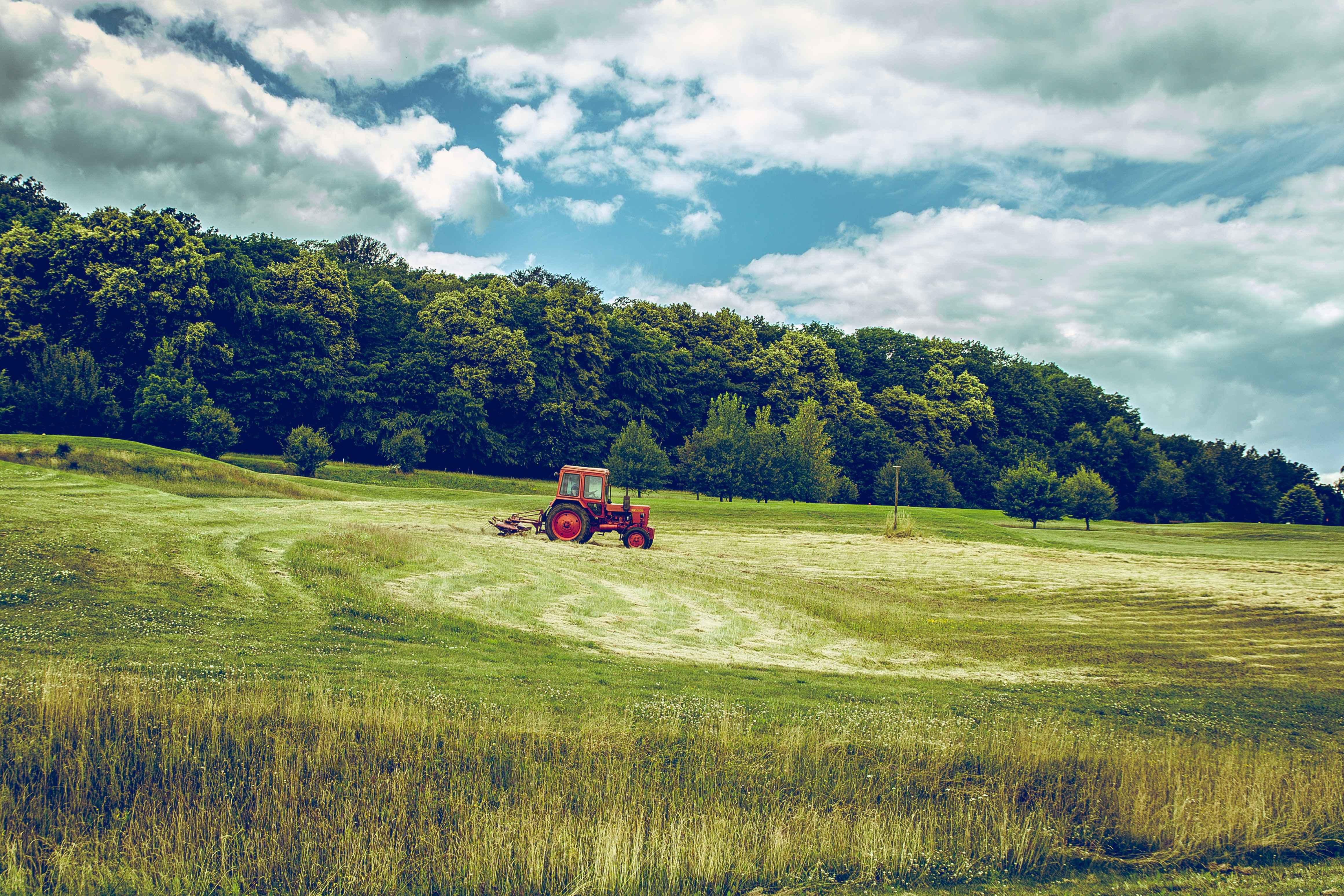 A red tractor in a green field near a forest