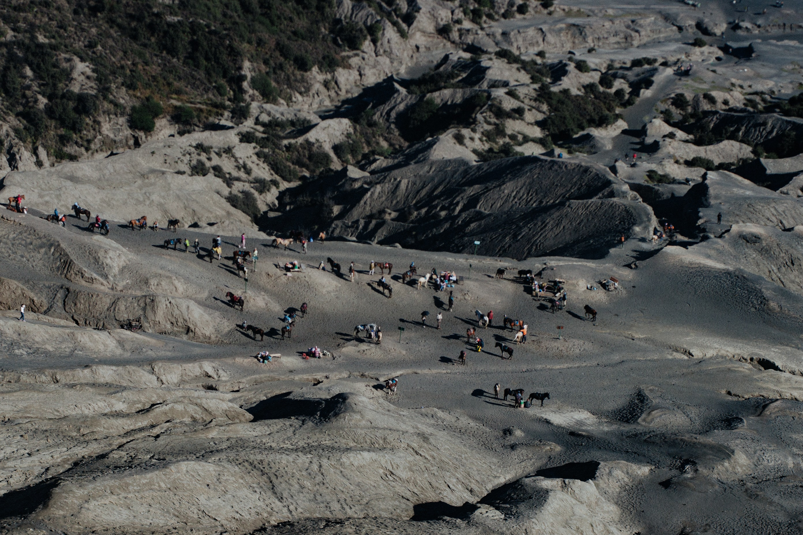 A high shot of a group of people and horses on the rocky slope of a mountain