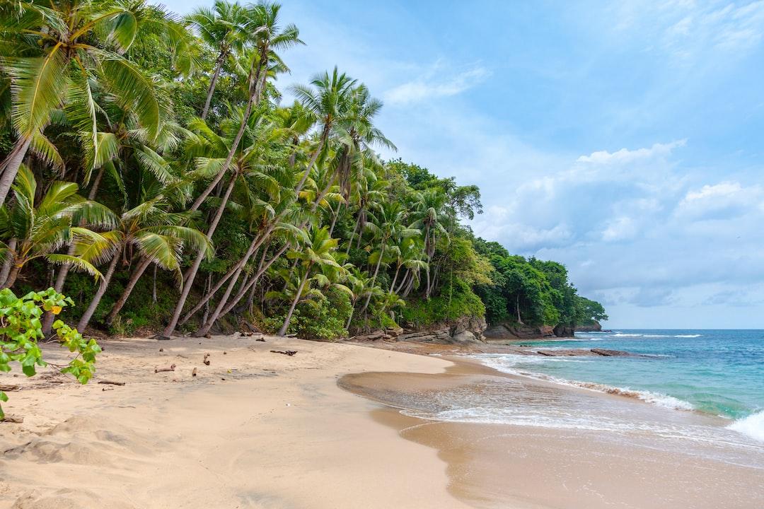 Castaway on a tropical island