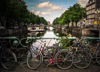 assorted-color bicycles park beside blue rails near river amsterdam teams background