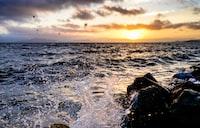 shallow focus photography of seashore with waves under orange sunset