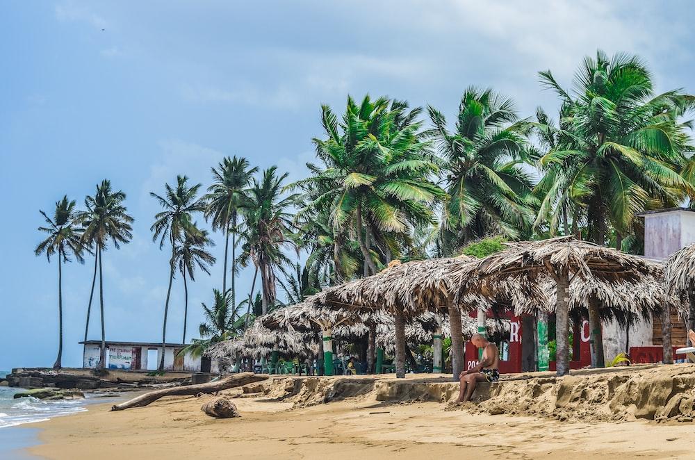 person sitting under brown huts near seashore at daytime
