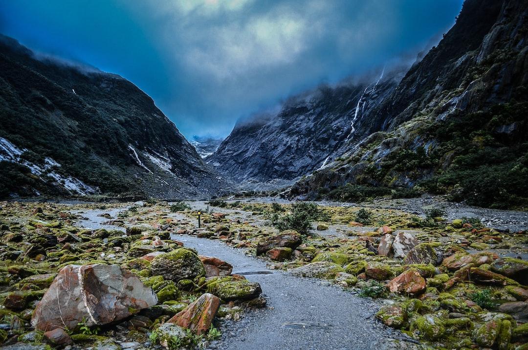 Mossy rocks near a glacier