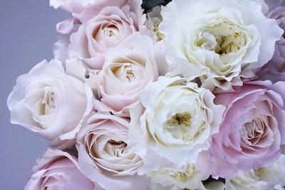 3951. Virágok