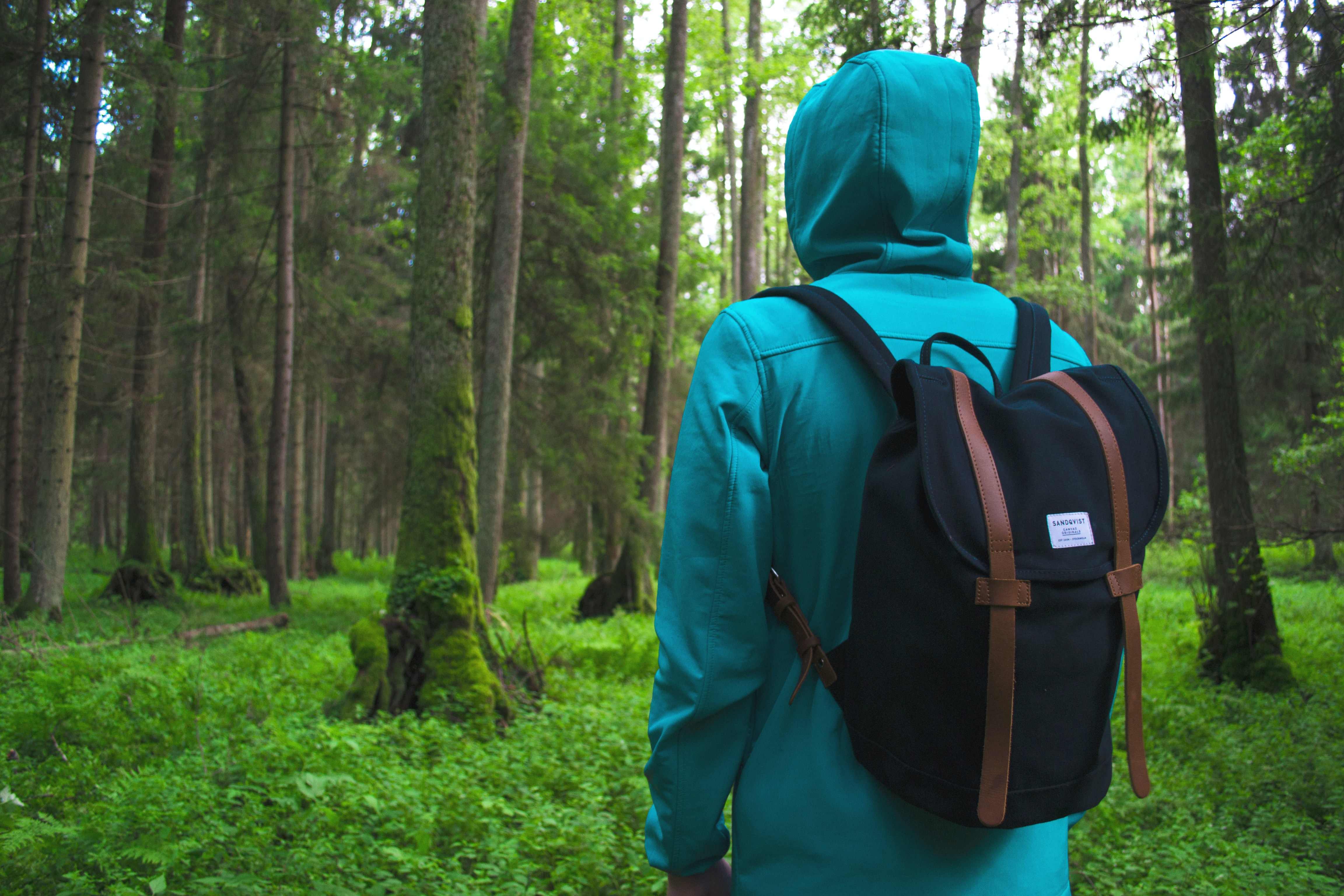 A hooded hiker with a small backpack in a green forest