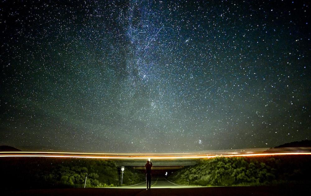 grey concrete road win between trees under night sky