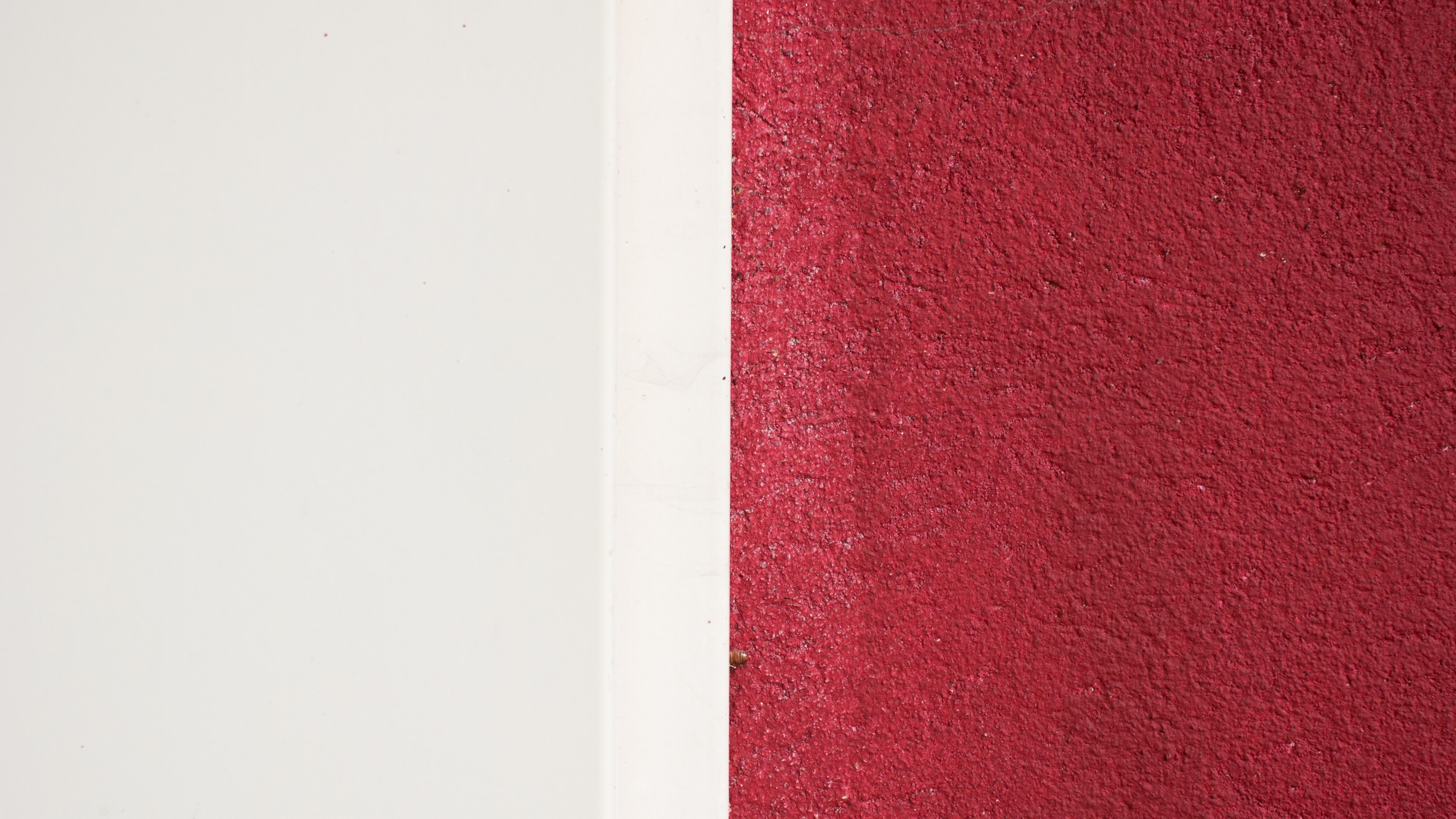 A straight line dividing parts of a wall painted white and red