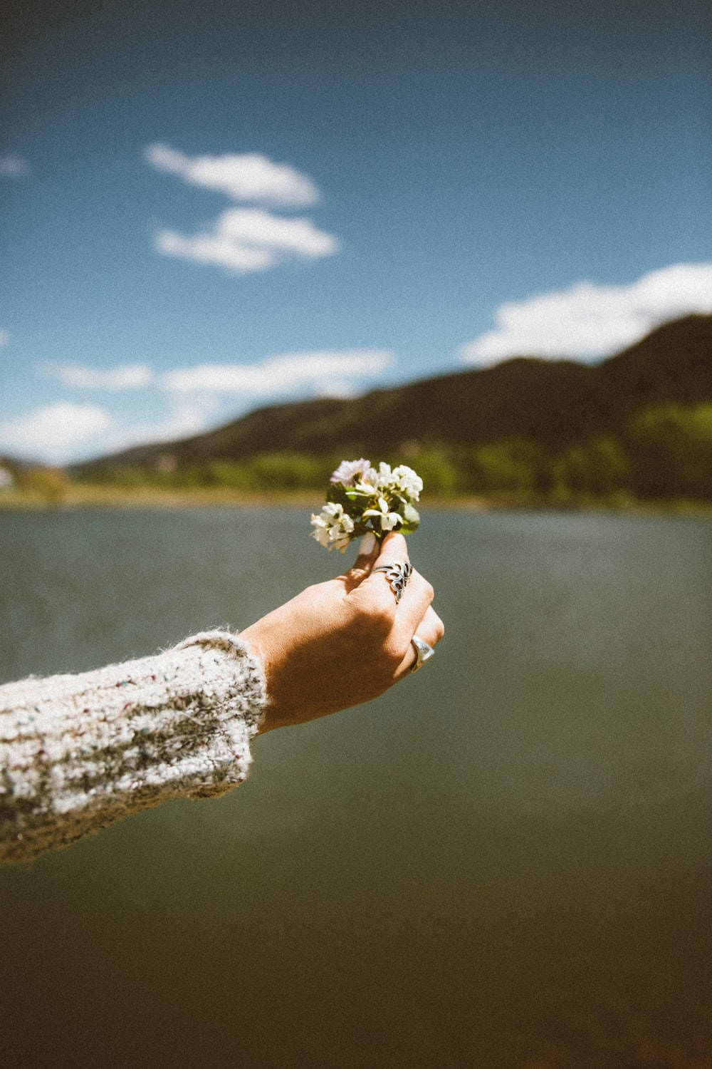 woman holding white petaled flowers