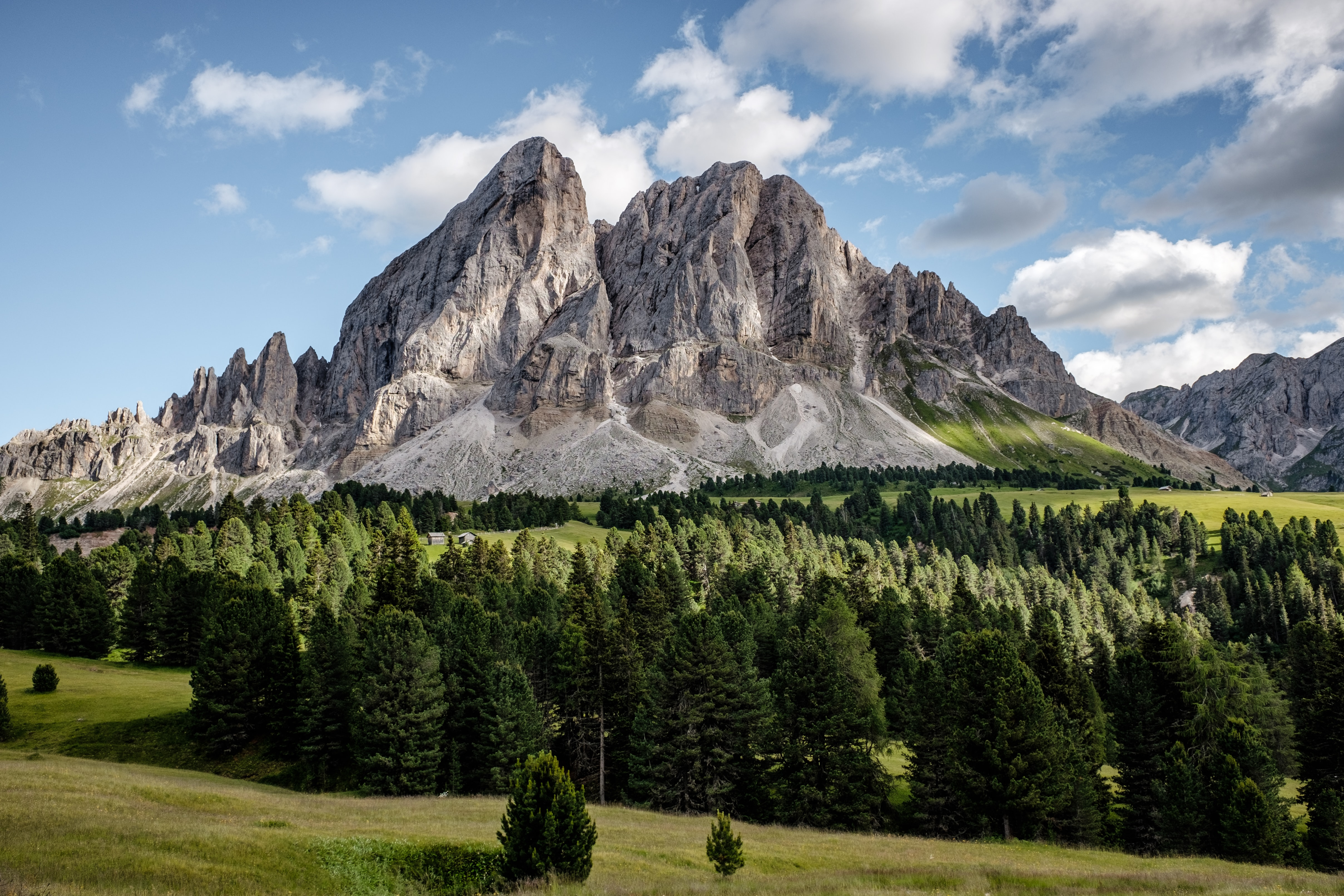 An evergreen forest at the foot of a jagged granite mountain in San Martino in Badia
