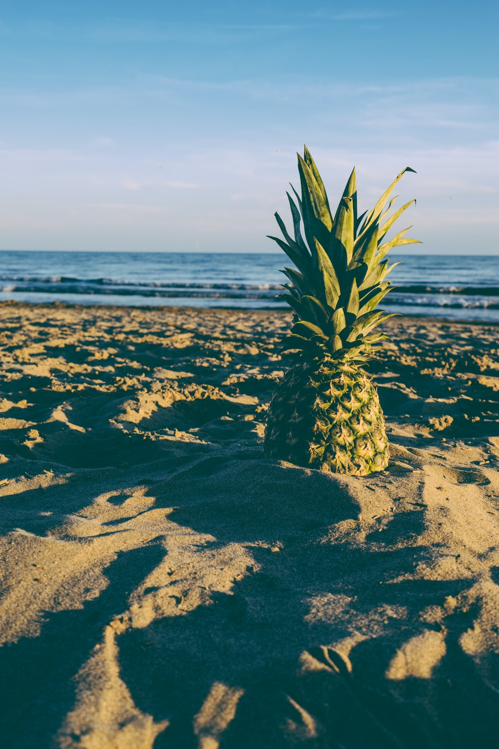 shallow focus photo of yellow pineapple on sand