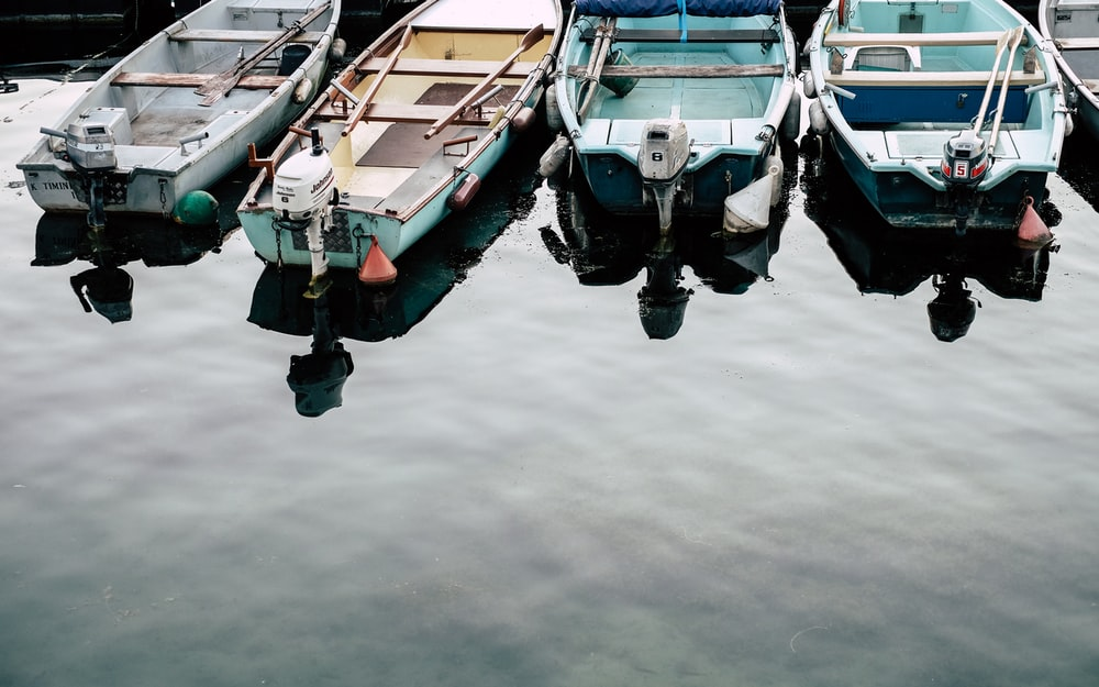 four white and blue jon boats on calm body of water