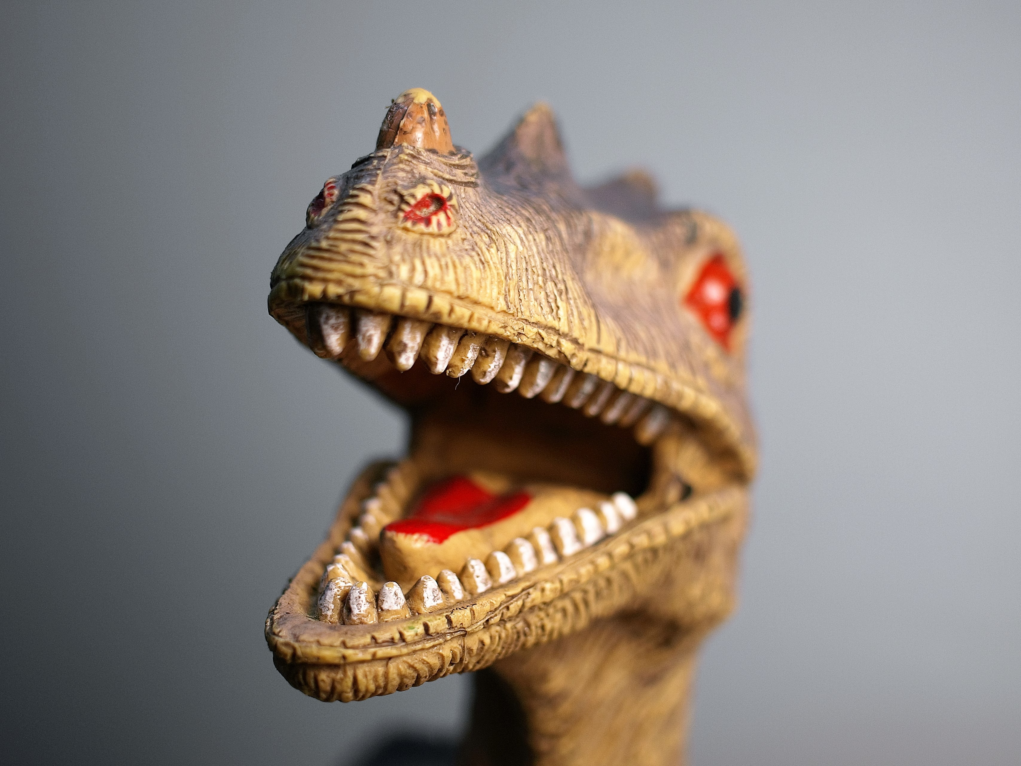 The head of a plastic dinosaur toy with the paint wearing off