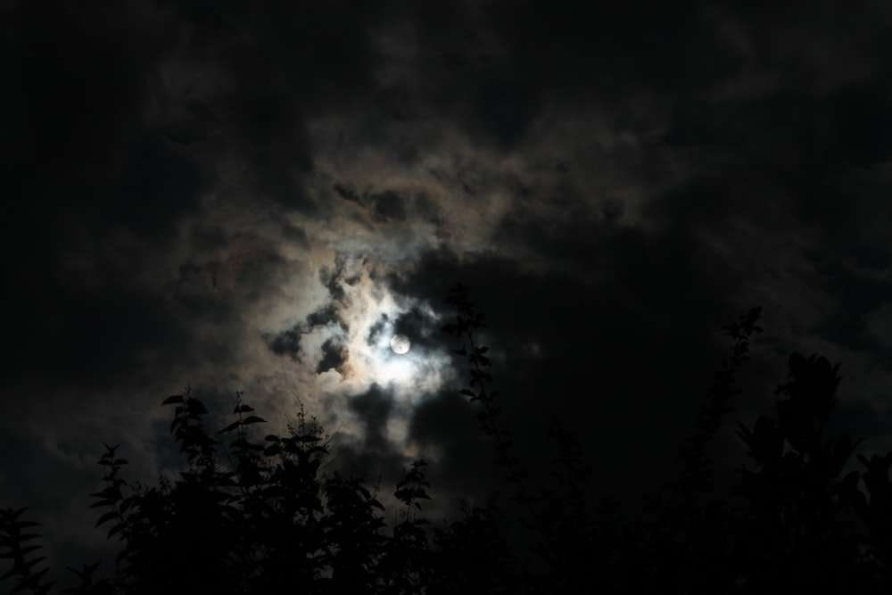 moon cover by clouds