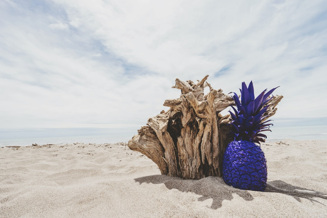pineapple painted purple at the beach