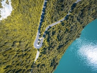Aerial view of a lakeside road