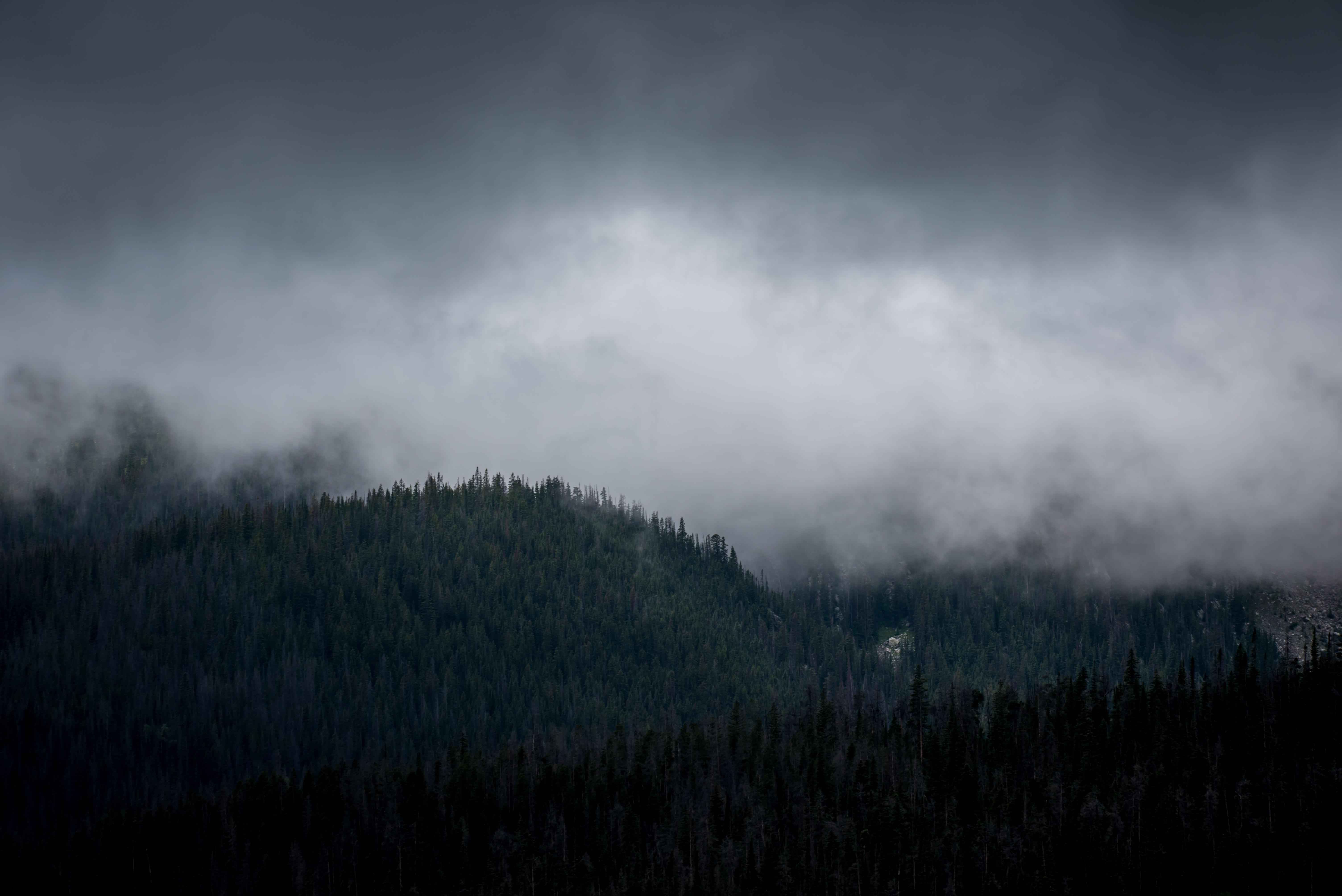 Heavy mist descending on wooded hills