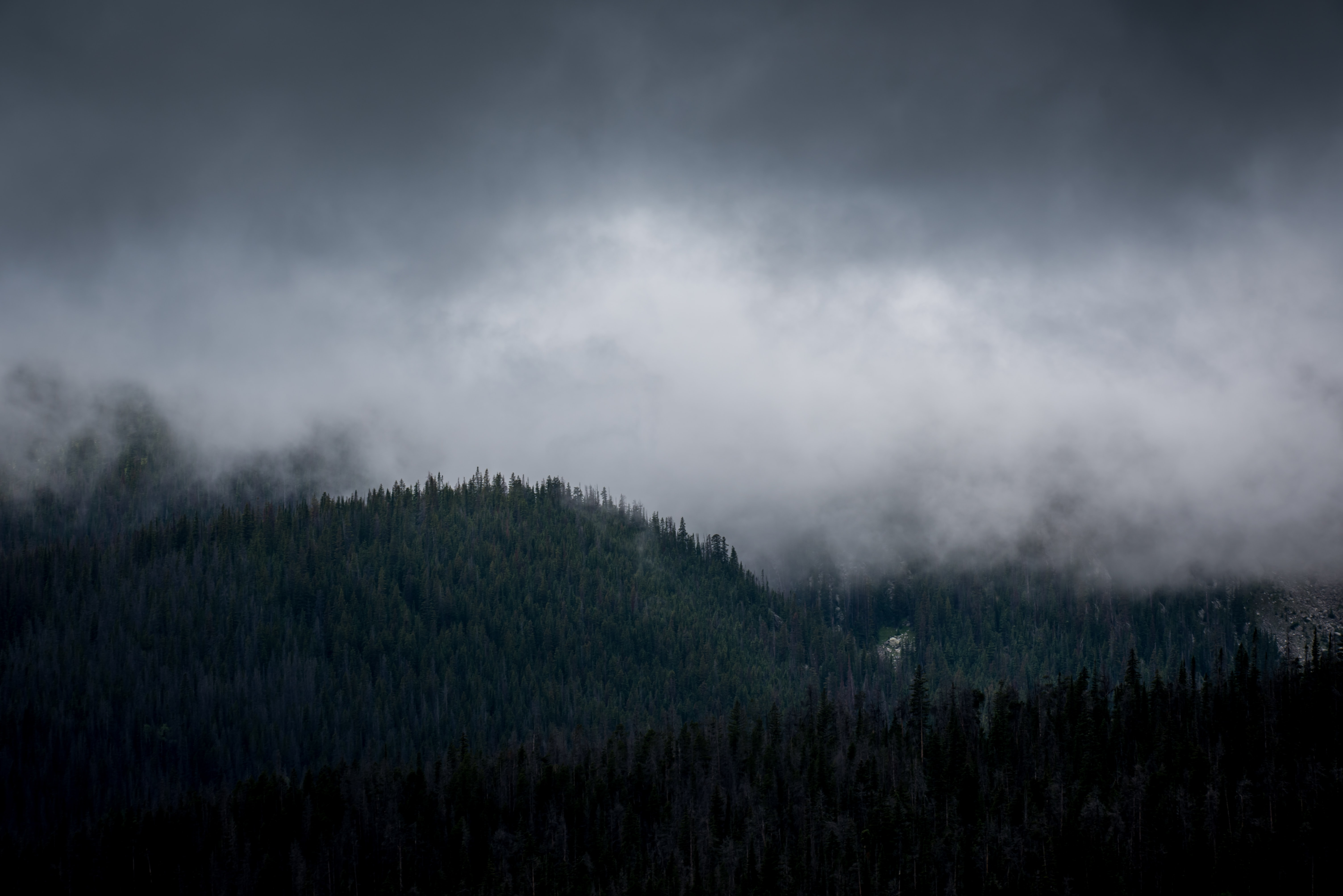 mountain under fog