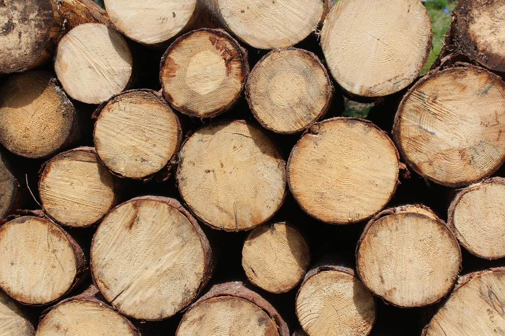 stack of cut log