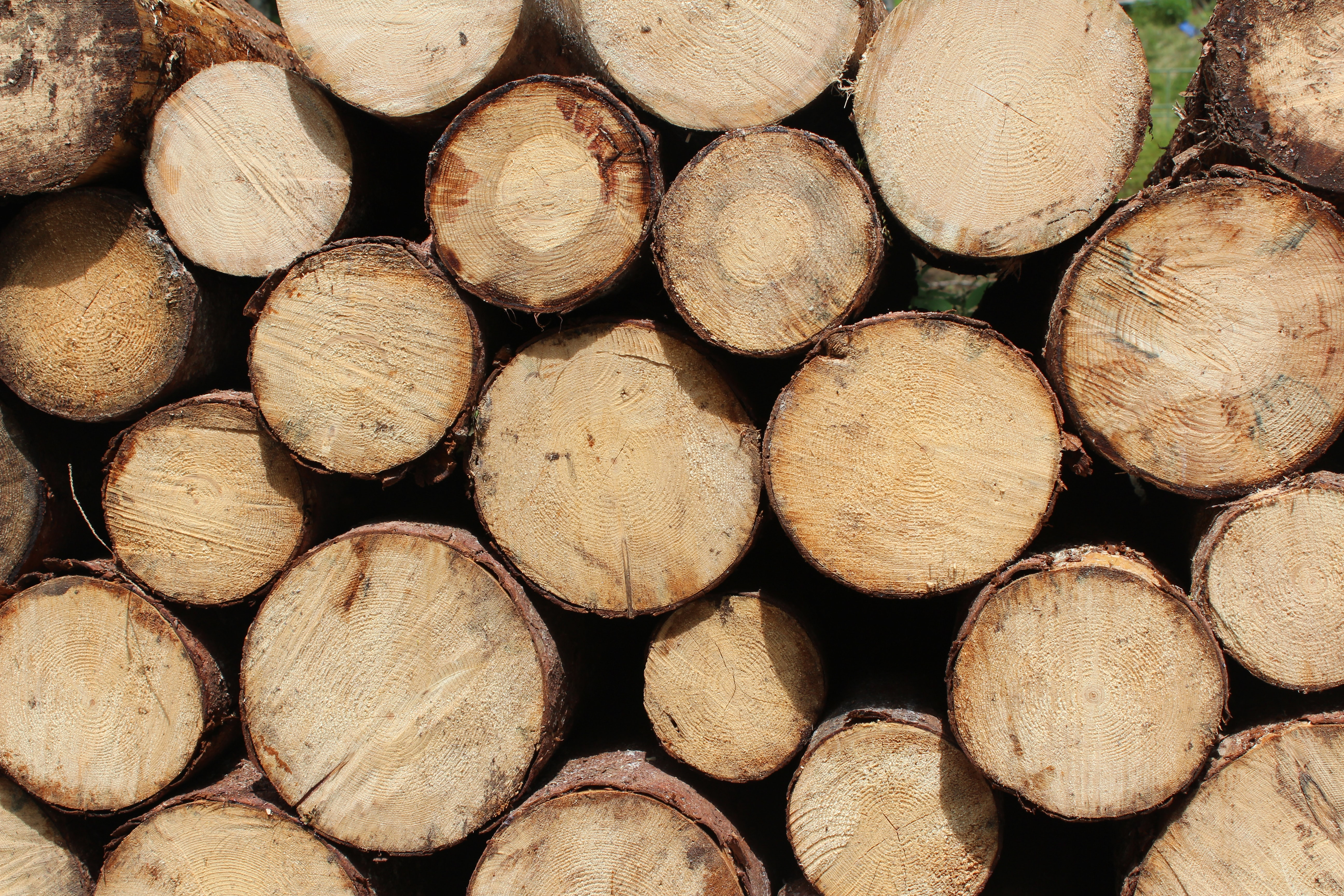 A pile of thick sawn logs stacked on top of each other