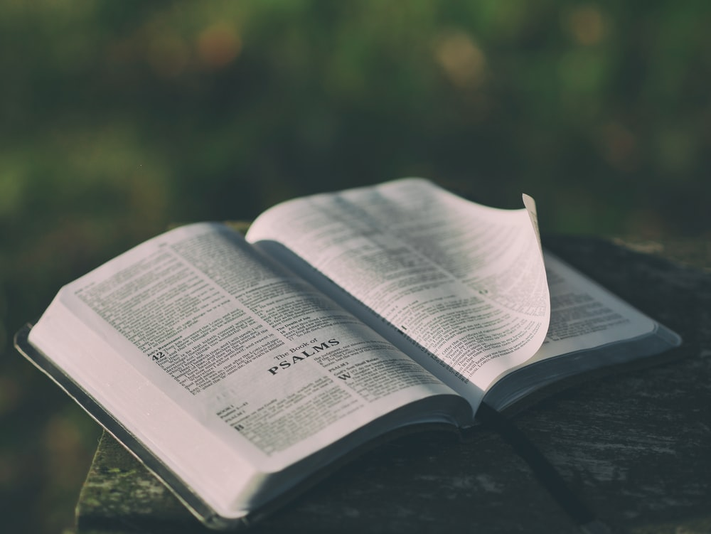 opened bible book on grey surface