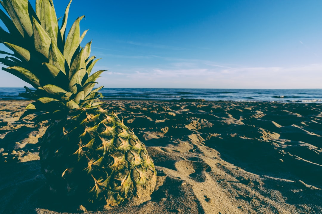 pineapple at sunset on the beach