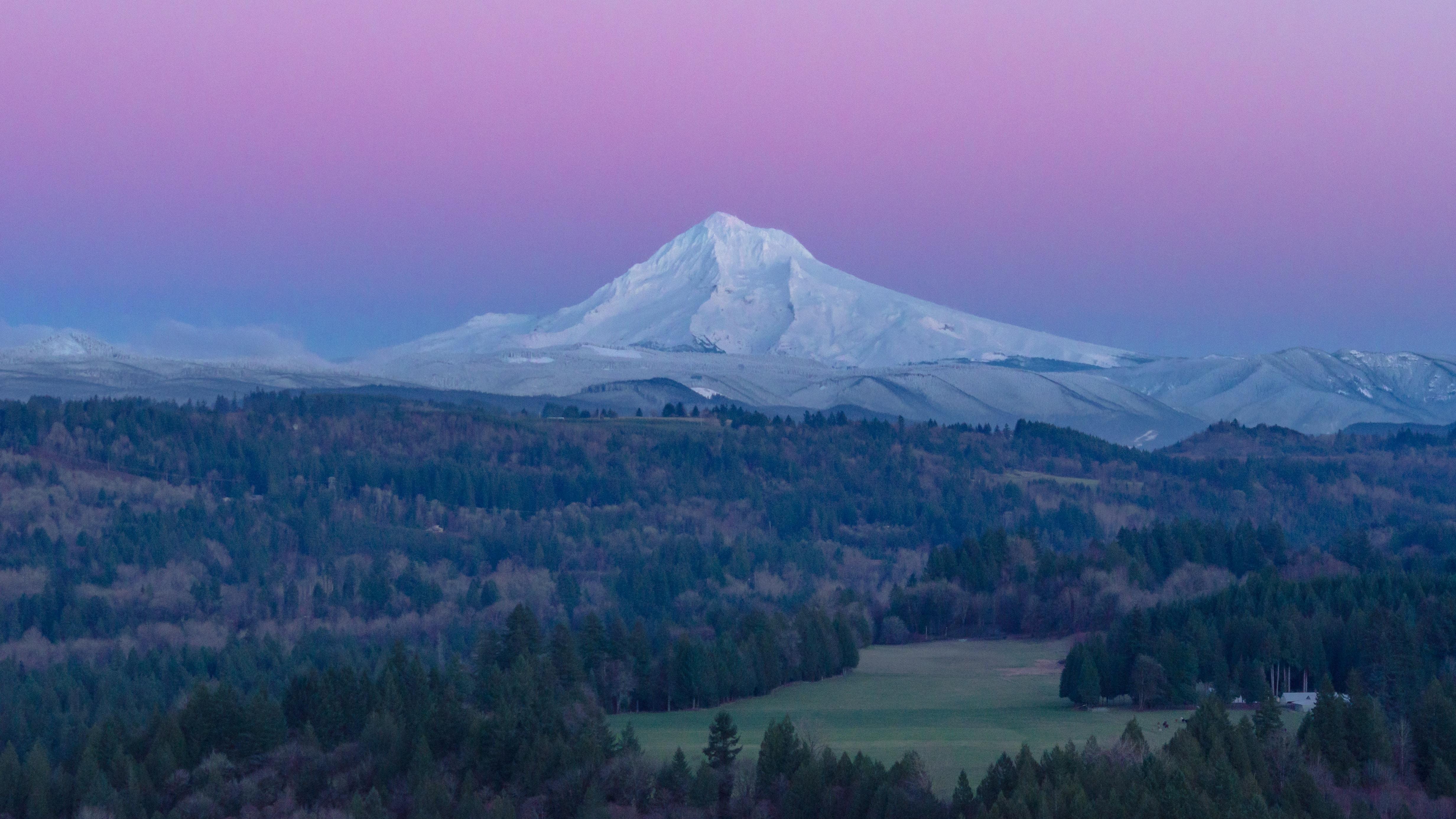 Woods around a snowy mountain under a purple sky