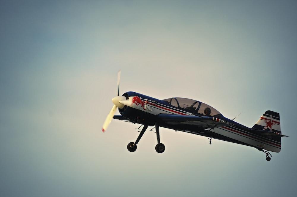 photo of Red Bull print plane