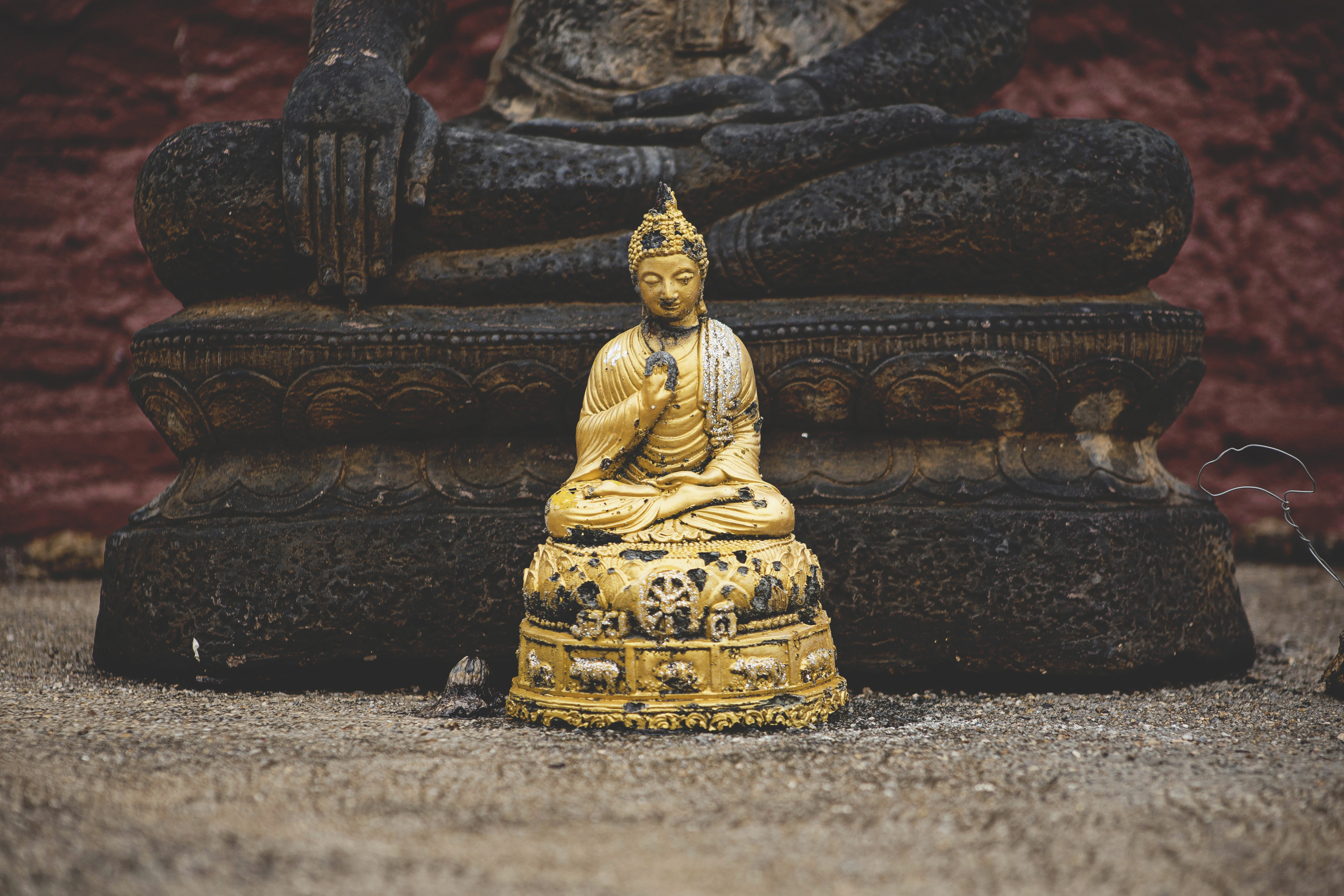selective focus photography of Dhyana Mudra figurine in front of Bumispharsha Mudra statue