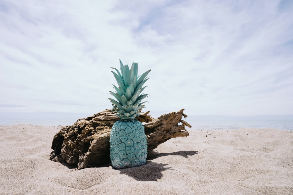 pineapple on sand