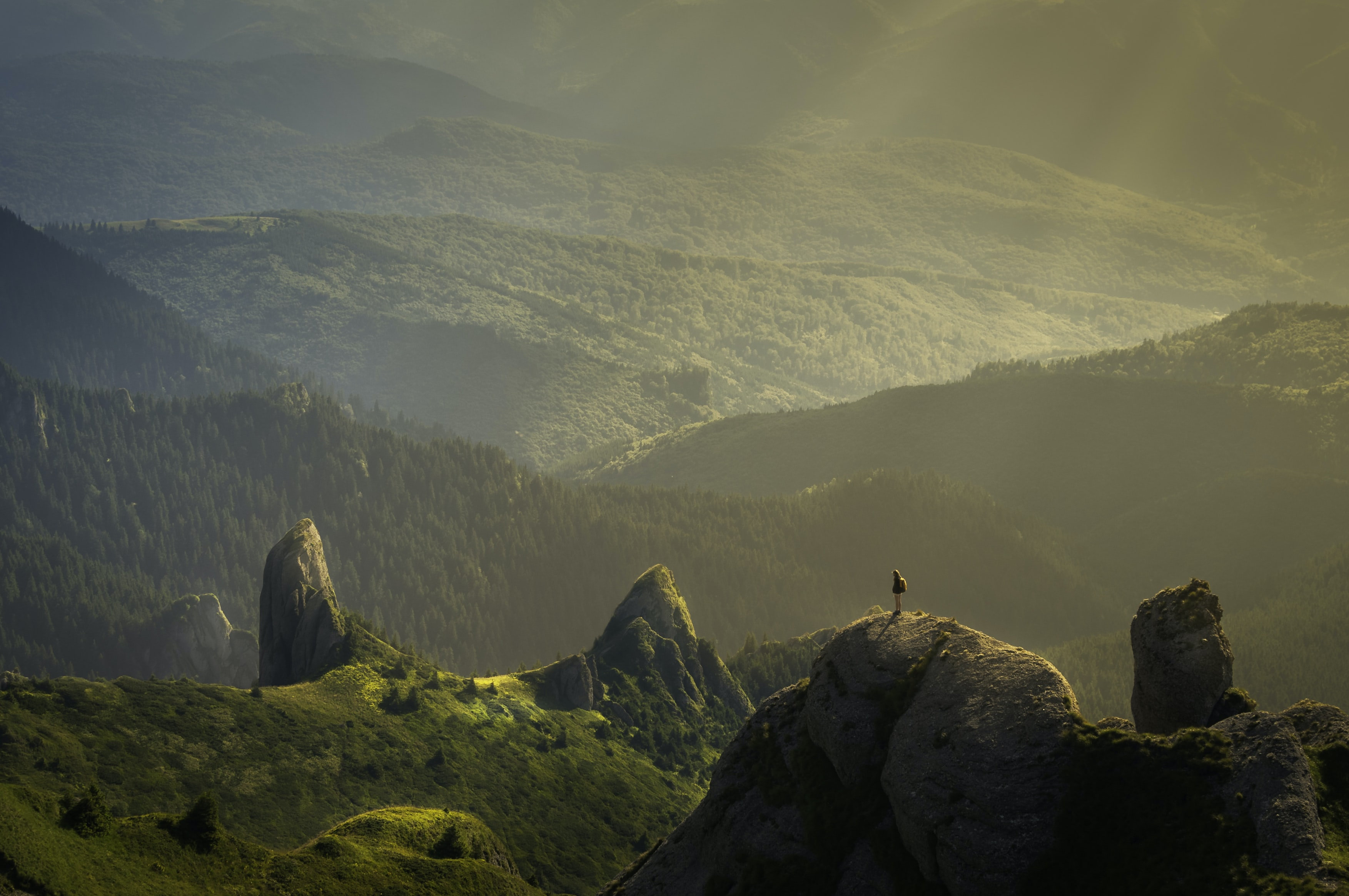 A person standing on a rock overlooking a sun-drenched undulating valley