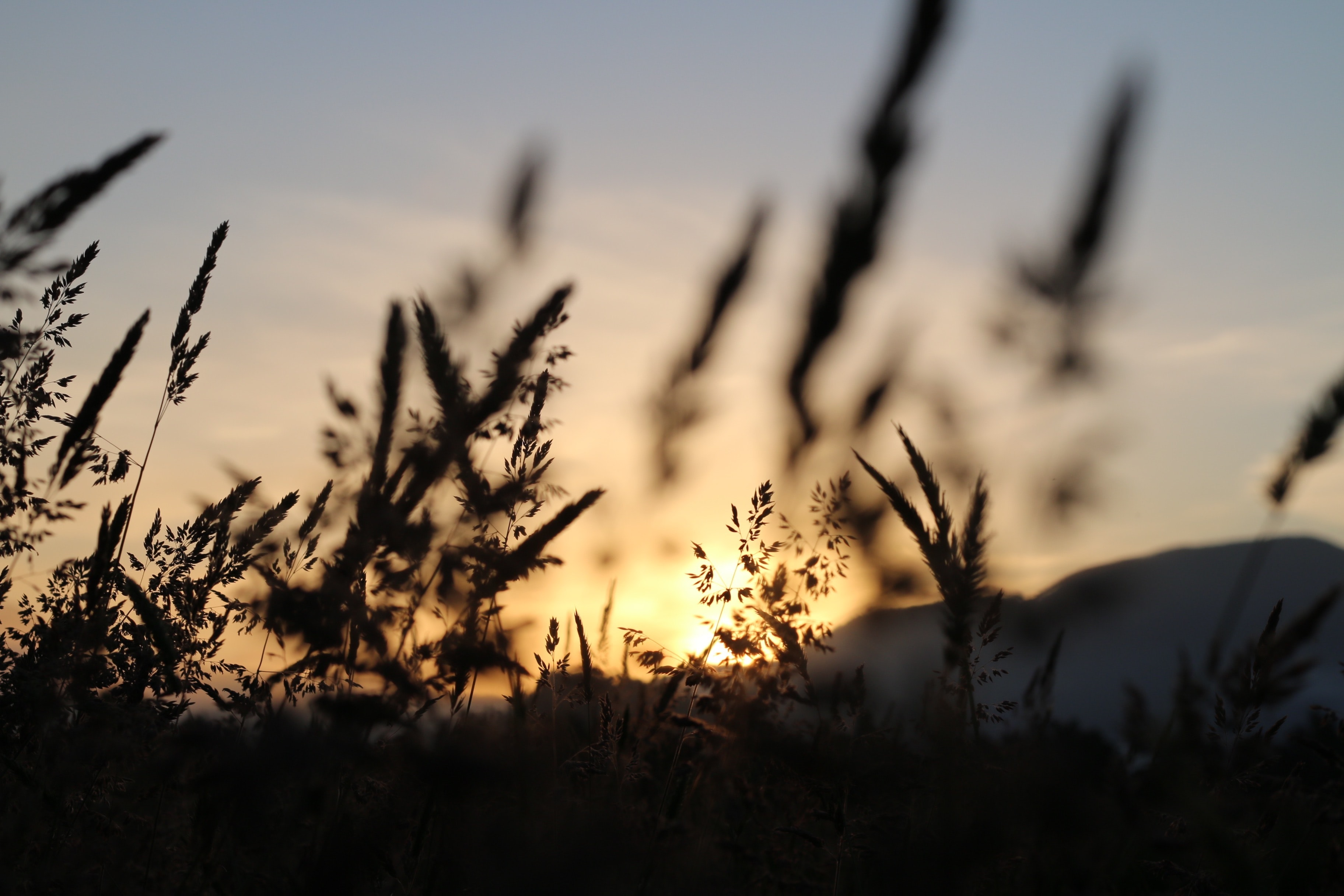sunset view on the mountain photography